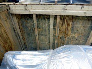 Verschimmelter Innenraum einer Kiste