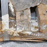 In Sperrschicht nass eingepacktes verschimmeltes Holz