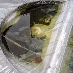 Verpackungsschaden - Wassersack und Biotop auf einer Sperrschicht