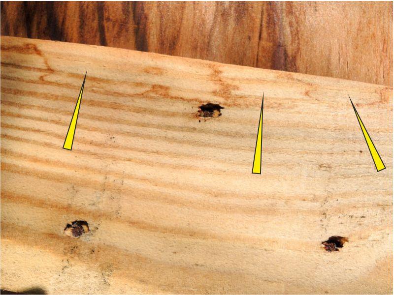 Spuren von Wasser an einer Deckelleiste